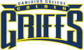 Canisius Golden Griffins 1999-2005 Wordmark Logo 02 iron on sticker