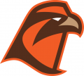 Bowling Green Falcons 2006-Pres Secondary Logo 03 decal sticker