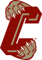 College of Charleston Cougars 2003-2012 Secondary Logo iron on sticker