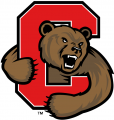 Cornell Big Red 1998-2001 Alternate Logo iron on sticker