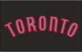 Toronto Raptors 2008-2015 Jersey Logo decal sticker
