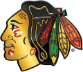 Chicago Blackhawks 2013 14 Special Event Logo iron on sticker
