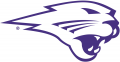 Northern Iowa Panthers 2002-2014 Partial Logo 01 iron on sticker