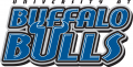 Buffalo Bulls 1997-2006 Wordmark Logo 02 decal sticker