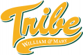 William and Mary Tribe 2016-2017 Alternate Logo iron on sticker