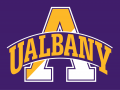Albany Great Danes 2001-2006 Alternate Logo 3 decal sticker