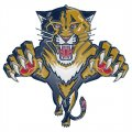 Florida Panthers Plastic Effect Logo iron on sticker