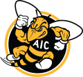 AIC Yellow Jackets 2009-Pres Alternate Logo 02 decal sticker