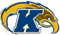 Kent State Golden Flashes 2000-Pres Alternate Logo iron on sticker