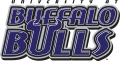 Buffalo Bulls 1997-2006 Wordmark Logo decal sticker
