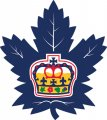 Toronto Marlies 2016 17-Pres Primary Logo iron on sticker