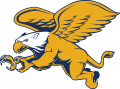 Canisius Golden Griffins 2006-Pres Secondary Logo iron on sticker