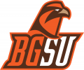 Bowling Green Falcons 2006-2011 Alternate Logo 06 decal sticker