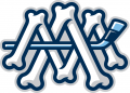 Milwaukee Admirals 2015 16-Pres Alternate Logo 2 iron on sticker