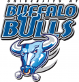 Buffalo Bulls 1997-2006 Alternate Logo decal sticker