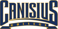 Canisius Golden Griffins 2006-Pres Wordmark Logo iron on sticker