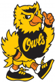 Kennesaw State Owls 1992-2011 Mascot Logo iron on sticker