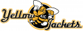 AIC Yellow Jackets 2009-Pres Alternate Logo 03 decal sticker