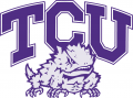 TCU Horned Frogs 1995-Pres Alternate Logo 02 iron on sticker