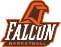 Bowling Green Falcons 1999-2005 Misc Logo decal sticker