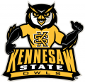 Kennesaw State Owls 2012-Pres Mascot Logo 01 iron on sticker