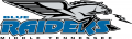 Middle Tennessee Blue Raiders 1998-2006 Primary Logo iron on sticker