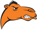 Campbell Fighting Camels 2005-2007 Alternate Logo iron on sticker
