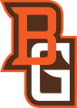 Bowling Green Falcons 2006-2011 Alternate Logo 05 decal sticker