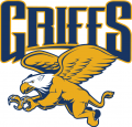 Canisius Golden Griffins 2006-Pres Alternate Logo 02 iron on sticker