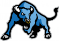 Buffalo Bulls 2007-2015 Secondary Logo 02 decal sticker