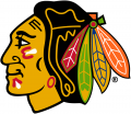 Chicago Blackhawks 1989 90-1995 96 Primary Logo iron on sticker