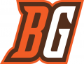 Bowling Green Falcons 2006-2011 Alternate Logo 02 decal sticker