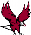 NCCU Eagles 2006-Pres Partial Logo iron on sticker