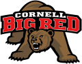 Cornell Big Red 1998-2001 Primary Logo iron on sticker