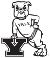 Yale Bulldogs 1972-1997 Primary Logo decal sticker