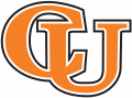 Campbell Fighting Camels 2005-2007 Wordmark Logo iron on sticker