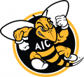 AIC Yellow Jackets 2009-Pres Alternate Logo decal sticker
