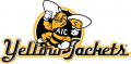 AIC Yellow Jackets 2009-Pres Alternate Logo 05 decal sticker
