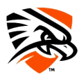 UTPB Falcons 2016-Pres Secondary Logo 01 iron on sticker