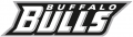 Buffalo Bulls 2007-Pres Wordmark Logo decal sticker