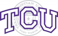 TCU Horned Frogs 1995-Pres Alternate Logo 01 iron on sticker