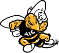 AIC Yellow Jackets 2001-2008 Primary Logo decal sticker