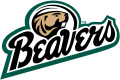 Bemidji State Beavers 2004-Pres Alternate Logo 01 decal sticker