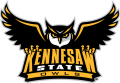 Kennesaw State Owls 2012-Pres Primary Logo iron on sticker