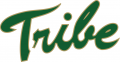 William and Mary Tribe 2009-2015 Primary Logo iron on sticker