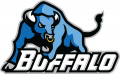 Buffalo Bulls 2007-2015 Secondary Logo decal sticker
