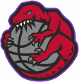Toronto Raptors 1995-1998 Alternate Logo decal sticker