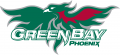 Wisconsin-Green Bay Phoenix 2007-Pres Primary Logo iron on sticker