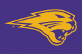 Northern Iowa Panthers 2002-2014 Partial Logo 02 iron on sticker